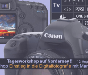 Collage_DSLR-Grundlagen-718x400